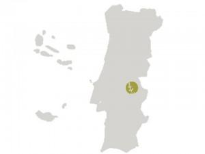 aCourela do Alentejo