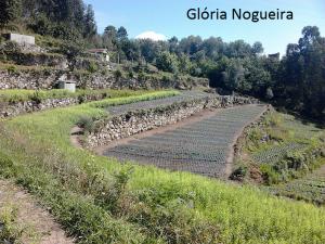 gloria nogueira (6)_epam