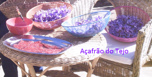 acafrao do tejo 2_epam