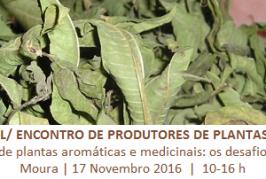Seminário/ Encontro de produtores de PAM terá lugar em Moura a 17 de Novembro