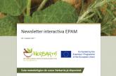 Newsletter interactiva EPAM N3 | Outubro 2017