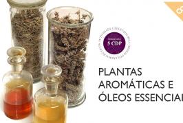 """Inscrições abertas para curso online """"Plantas Aromáticas e Óleos Essenciais"""" da Universidade de Coimbra"""