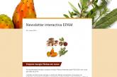 Newsletter interactiva EPAM N5 | Junho 2018