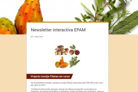 Newsletter interactiva EPAM N5   Junho 2018