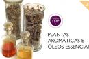 """12ª edição do curso de ensino a distância """"Plantas aromáticas e óleos essenciais"""" da Universidade de Coimbra"""