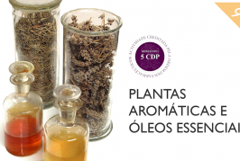 """Curso on-line """"Plantas Aromáticas e Medicinais"""" em 9ª edição"""