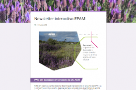 Newsletter interactiva N6 | Outubro 2018