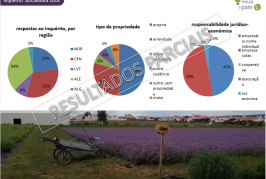 Resultados parciais de Estudo das PAM apresentados em Portel