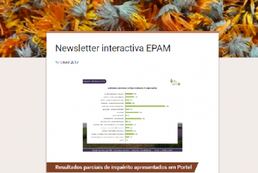 Newsletter interactiva EPAM N7 | Abril 2019
