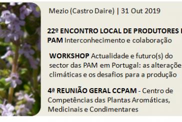 Jornada de PAM em Castro Daire no final de Outubro