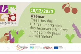 EPAM em webinário final do projecto Inov@sfileiras
