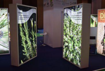 Espaço Inovação e reunião geral do CCPAM na FNA21